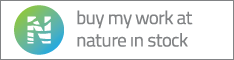 nature-in-stock_banner_234x60_white-color